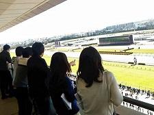 東京競馬場『来賓エリア ゲストルーム』20名様をご招待!【参加費無料】