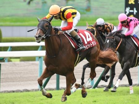 和田竜二騎手騎乗の8番人気ラビットランが差し切り勝ち
