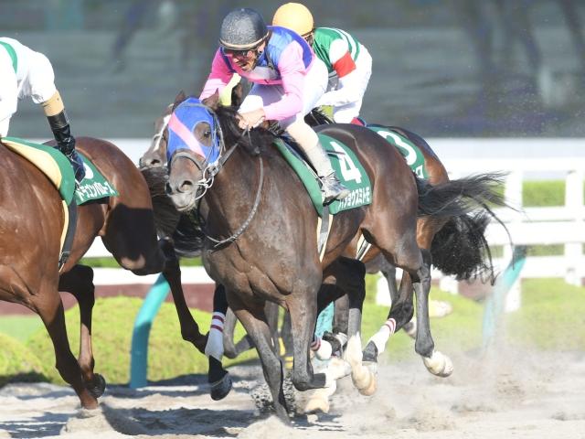古川吉洋騎手騎乗のメイショウスミトモが差し切り重賞初勝利