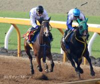 栗東CWで併せ馬。抽選突破に望みを託すジョワドヴィーヴル(左)