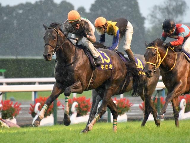 M.デムーロ騎手騎乗の1番人気キセキが菊花賞を制覇