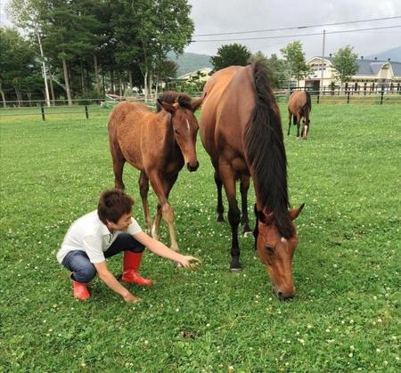 オースミハルカ&父エピファネイアの9番目の子と牧場で戯れる川島=撮影7月17日、本人提供