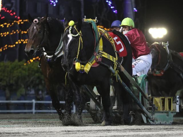 藤野俊一騎手騎乗のブルーオーシャンが勝利(写真提供:ばんえい十勝)