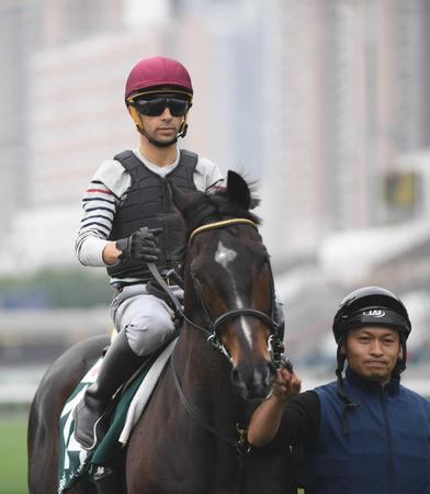 好馬体を誇るトーセンバジル