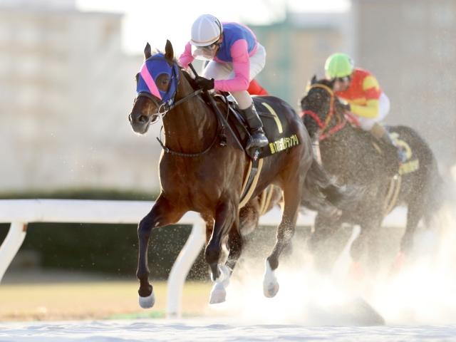 古川騎手騎乗のメイショウスミトモが重賞2勝目を挙げた(撮影:高橋正和)