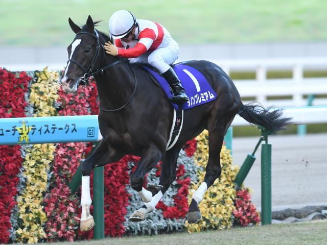 川田将雅騎手騎乗のダノンプレミアムが圧勝