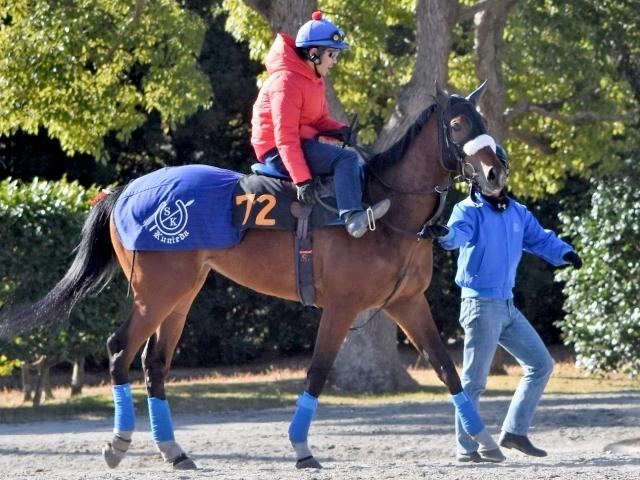 フサイチパンドラの娘・アーモンドアイが牡馬相手の重賞に挑む(撮影:佐々木祥恵)