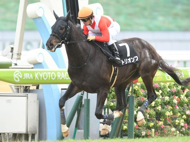 川田将雅騎手騎乗の3番人気トリオンフが快勝(c)netkeiba.com