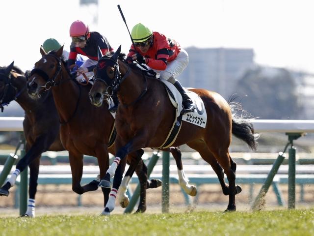 柴田善臣騎手騎乗の4番人気エピックスターが新馬勝ち(撮影:下野雄規)
