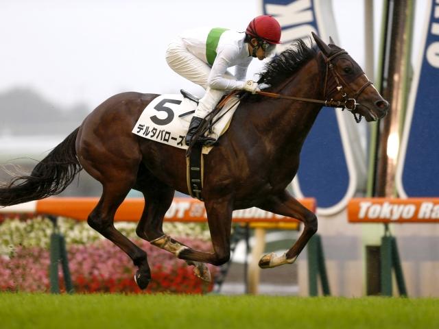 前走の新馬戦(写真)を4馬身差で圧勝したデルタバローズが1番人気(撮影:下野雄規)