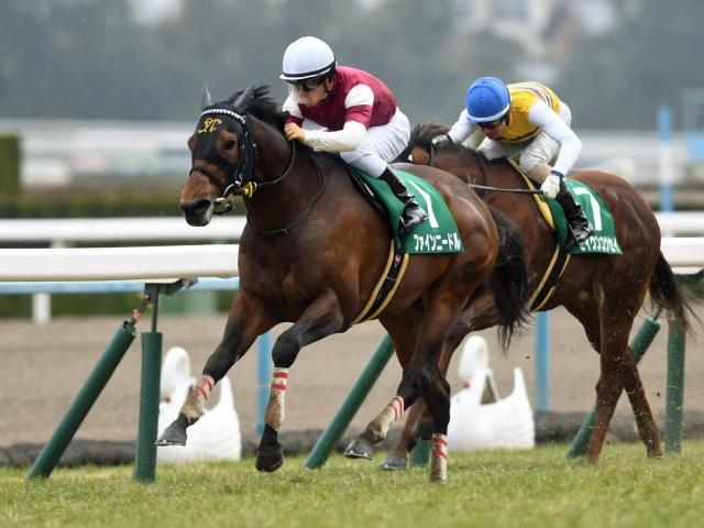 川田将雅騎手騎乗の4番人気ファインニードルが快勝