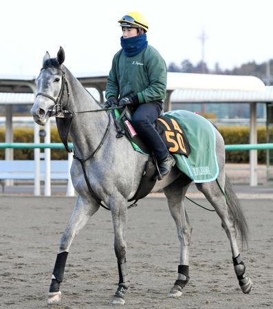 藤沢和厩舎が今年の牝馬クラシック戦線に送り込むアルーシャ