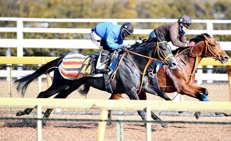 馬なりながら軽快な動きが目立ったサトノソルタス