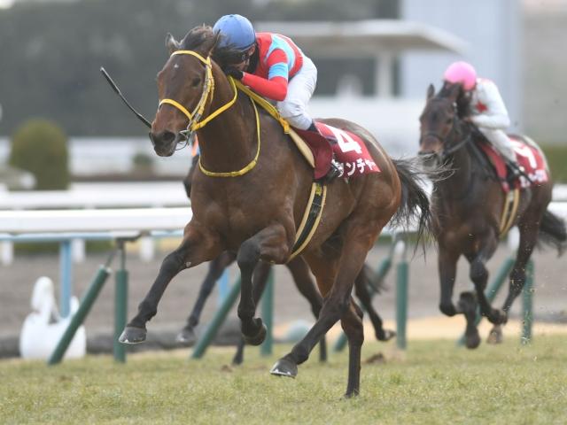 藤岡佑介騎手騎乗のクリンチャーが重賞初制覇