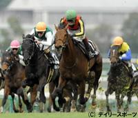 若葉Sを制したワールドエース(中央)=阪神競馬場