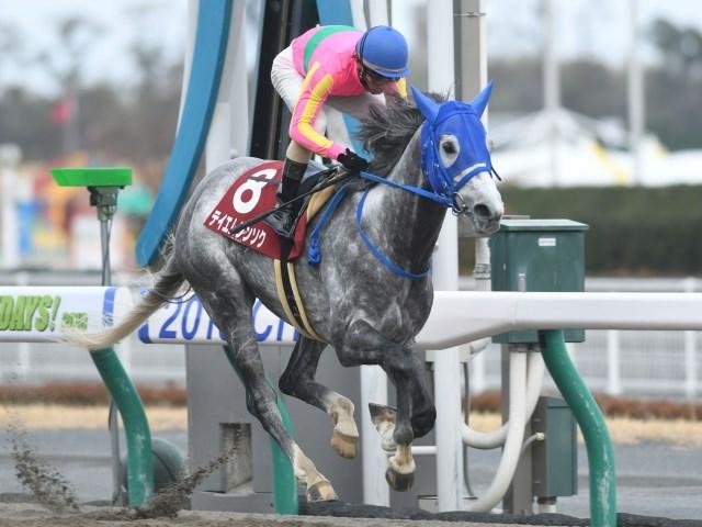 古川吉洋騎手騎乗で、フェブラリーSでも人気最上位となりそうなテイエムジンソク