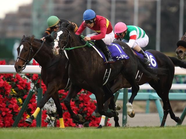 有馬記念優勝時の主戦、吉田隼人騎手とのコンビ復活となるゴールドアクター(撮影:下野雄規)