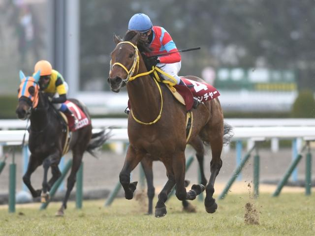 武豊騎手への乗り替わりとなる4歳馬クリンチャーに注目