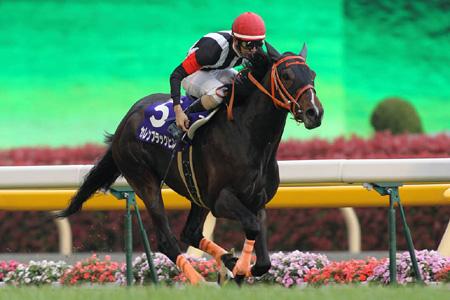 秋山真一郎騎手のカレンブラックヒルが無敗で3歳マイル王に君臨!(撮影:下野雄規)