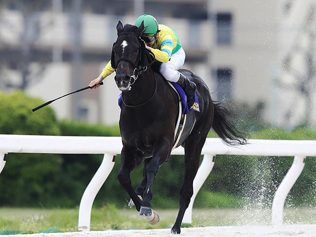松山弘平騎手騎乗の2番人気サクセスエナジーが優勝(撮影:高橋正和)