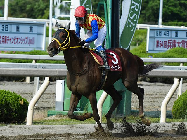 岩田康誠騎手騎乗の1番人気テーオーエナジーが優勝(撮影:森鷹史)