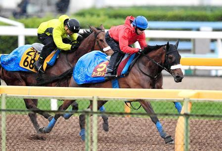ルメールを背に、牝馬2冠へ順調なアーモンドアイ(手前)