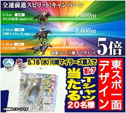 川崎マイラーズはポイント最大5倍!