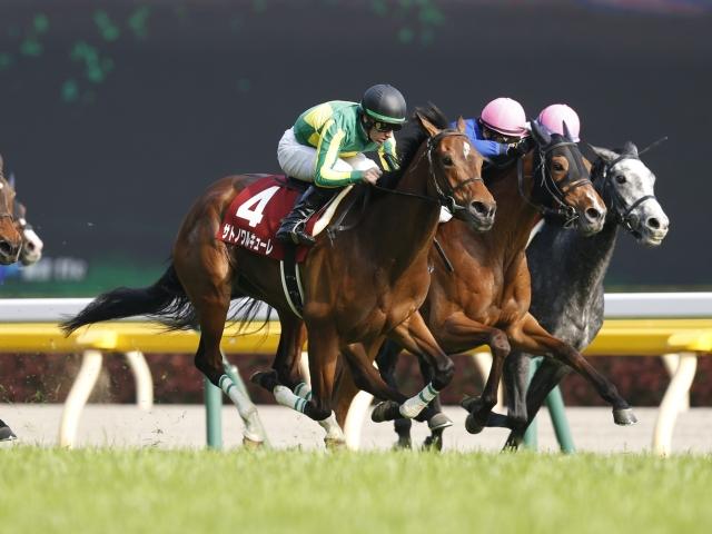 デビュー当時から比べると別馬に思えるサトノワルキューレ(C)netkeiba.com、撮影:下野雄規