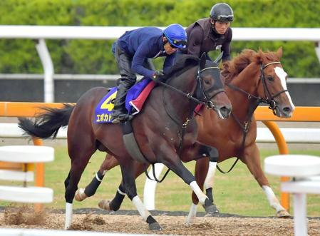 皐月賞馬エポカドーロ(手前)は栗東CWで軽めの内容