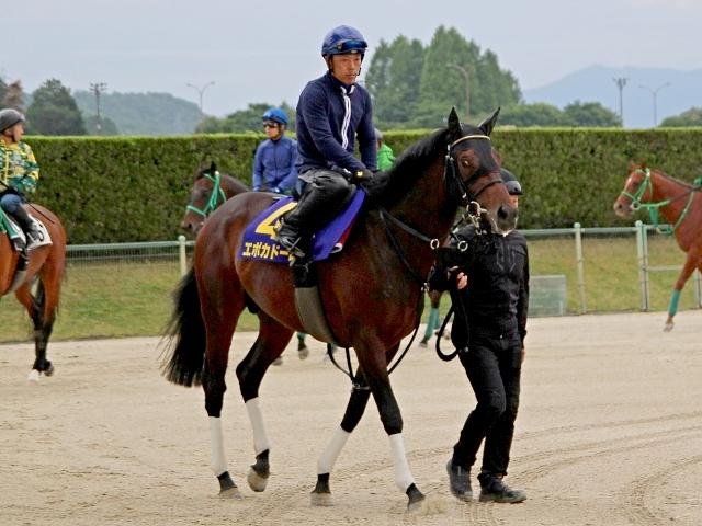 皐月賞馬・エポカドーロは陣営も納得の仕上げができている(撮影:花岡貴子)