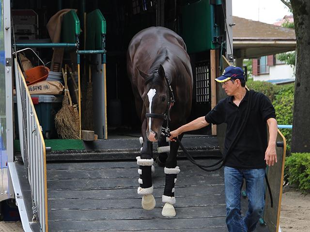 一歩一歩、脚元を確認するようにゆっくりと馬運車から降りるダノンプレミアム(撮影:花岡貴子)