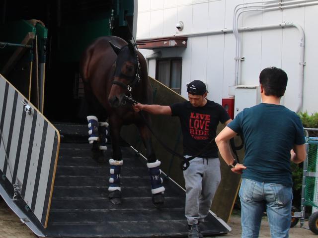 藤原師(手前)が見守る中、馬運車から降りるエポカドーロ(撮影:花岡貴子)