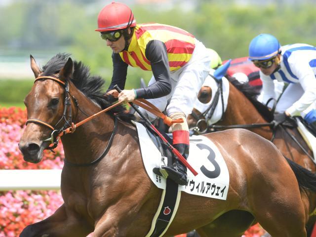 新種牡馬ジャスタウェイ産駒の初勝利となったアウィルアウェイ(c)netkeiba.com