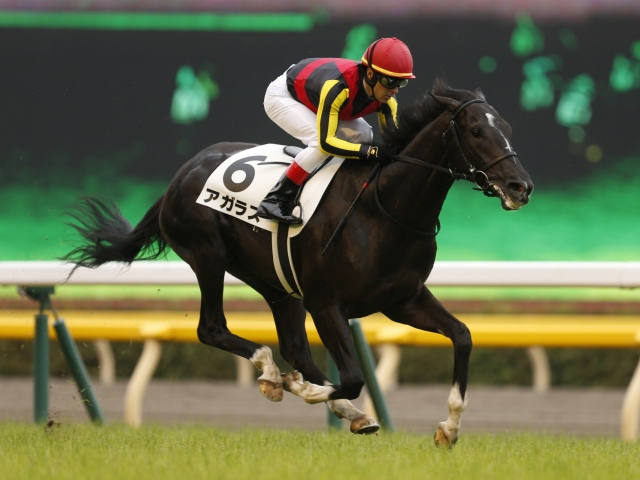 C.ルメール騎手騎乗の1番人気アガラスが新馬勝ち(撮影:下野雄規)