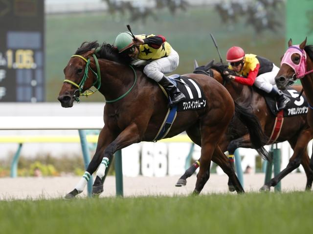 持ち前のスピードを生かせるこの馬に注目!(撮影:下野雄規)