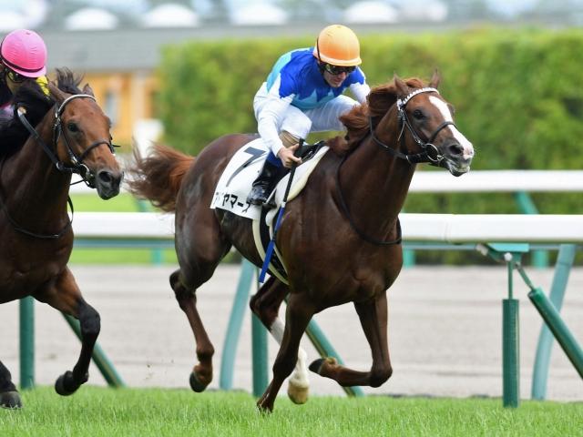 M.デムーロ騎手騎乗の1番人気アドマイヤマーズが新馬勝ち