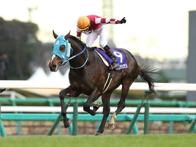 石神騎手「またオジュウみたいな強い馬に巡り合えたら、この経験を生かしたい」(撮影:下野雄規、(C)netkeiba.com)