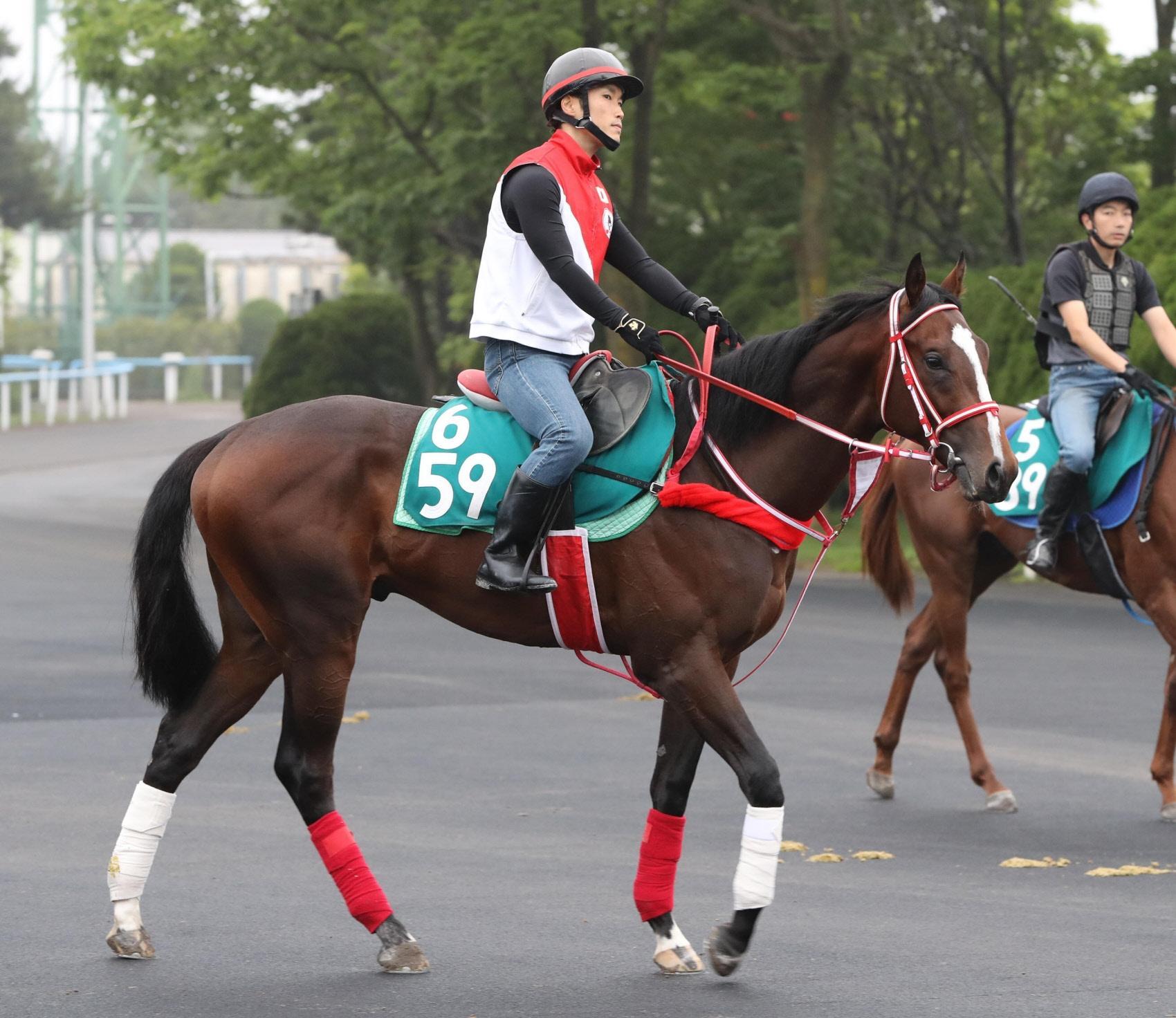 馬場へ向かう矢作厩舎のチェルシーライオン
