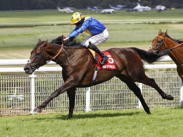 凱旋門賞でも上位人気のポエッツワード(提供元:Racingfotos.com)