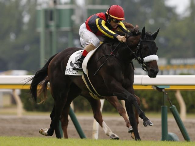 C.ルメール騎手騎乗の1番人気ドナアトラエンテが新馬勝ち(撮影:下野雄規)