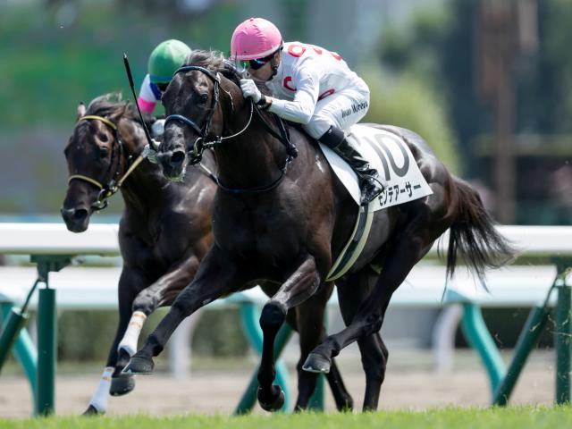 モレイラ騎手騎乗のモンテアーサーが人気に応えて新馬勝ち