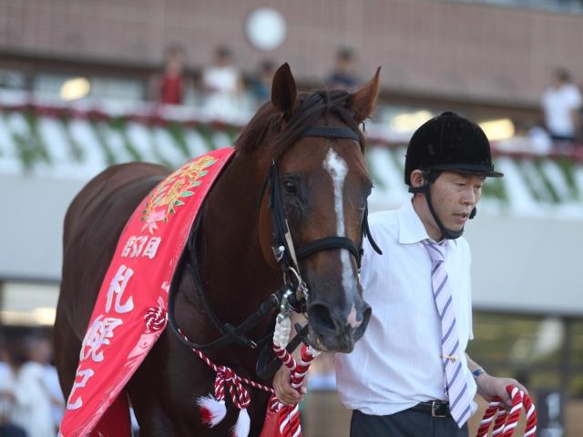 前年の覇者サクラアンプルールも出走予定、強豪相手に連覇を目指す(撮影:高橋正和)