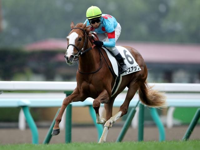 藤岡佑介騎手騎乗の4番人気トスアップが圧勝