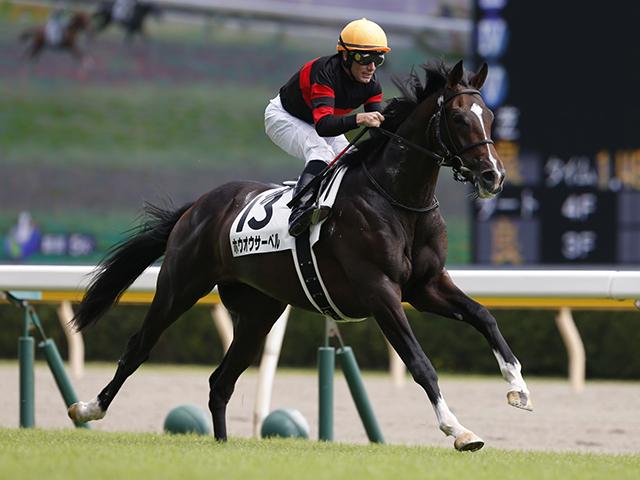 M.デムーロ騎手騎乗の1番人気ホウオウサーベルが優勝(撮影:下野雄規)