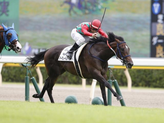 新潟1Rの2歳未勝利は2番人気マーマレードガールが勝利(c)netkeiba.com、撮影:下野雄規
