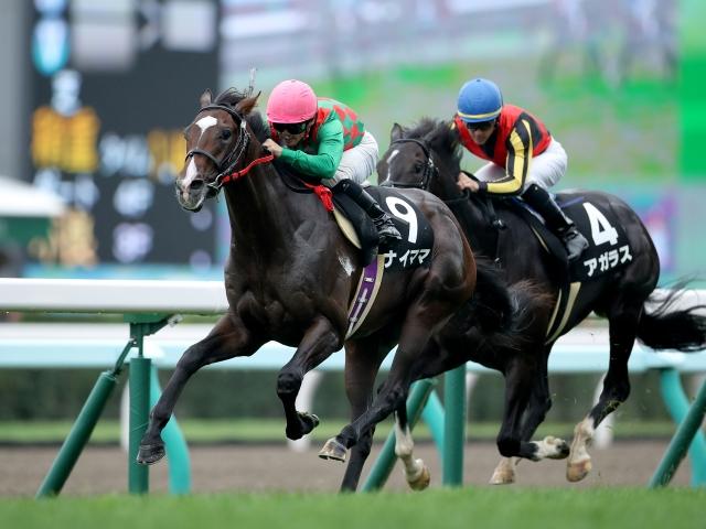 3番人気北海道のナイママが勝利