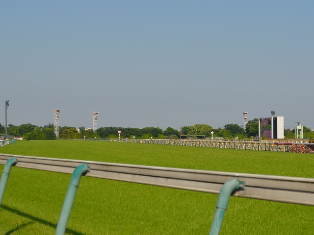 UMACAシートが最初に導入される東京競馬場