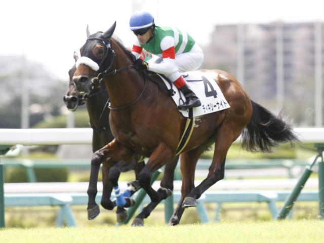 中山2Rは1番人気ディキシーナイトが勝利(c)netkeiba.com、撮影:下野雄規