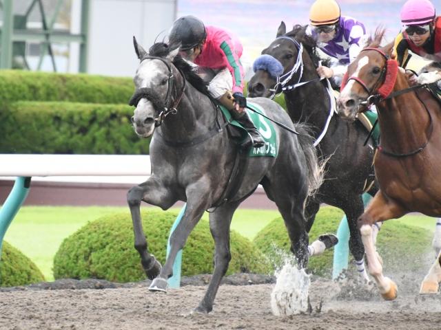 和田竜二騎手騎乗の2番人気オメガパフュームが重賞初制覇