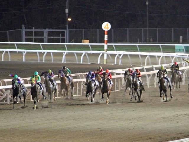 久しぶりのナイター競馬を約400人が門別競馬場で楽しんだ